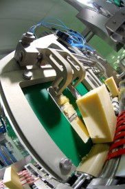 Rockwell cheese processing