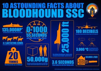 Bloodhound Factsheet
